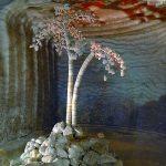 Экскурсии в Соледар — Соляные шахты